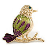 Gold Multicoloured Bird Brooch
