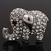 Rhodium Plated Clear Crystal 'Fortunate Elephant' Brooch