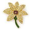 Yellow/ Green Enamel Crystal Daffodil Brooch In Gold Plating - 55mm L