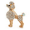Small Clear Crystal Poodle Brooch In Gold Tone Metal - 38mm