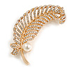 Clear Crystal Feather Brooch In Gold Tone - 65mm Long