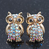 Small AB Crystal 'Owl' Stud Earrings In Gold Plating - 18mm Length