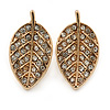 Small Clear Crystal Leaf Stud Earrings In Gold Tone - 20mm L