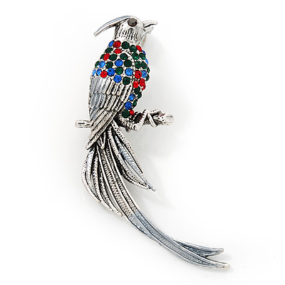 Multicoloured Exotic Bird Brooch In Silver Tone Metal