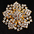 Victorian Corsage Flower Brooch (Clear) - view 8