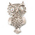 Large Filigree Crystal Owl Brooch (Silver Tone) - view 9
