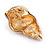 Pale Pink/ Purple Enamel Sea Shell Brooch In Gold Tone Metal - 35mm Across - view 4