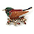 Brown/ Green/ Red Enamel, Crystal Robin/ Bullfinch Bird Brooch In Aged Gold Tone - 55mm Across