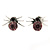 Small Lilac/ Black Crystal 'Spider' Stud Earrings In Silver Plating - 12mm Across