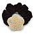 Gold Plated Simulated Pearl 'Flower' Pony Tail Black Hair Scrunchie - Light Cream/ AB