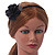 Thin Black With Side Silk & Feather Rose Flower Alice/ Hair Band/ HeadBand - view 3
