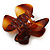 Medium Butterfly Brown Acrylic Hair Claw - 60mm Width - view 7