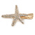 Clear Crystal Starfish Hair Beak Clip/ Concord Clip/ Clamp Clip In Gold Tone - 65mm L - view 4
