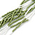 Multistrand White/ Green Glass Bead Necklace - 49cm L - view 2