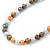 8mm Multicoloured Oval Freshwater Pearl Necklace In Silver Tone - 39cm L/ 4cm Ext - view 3